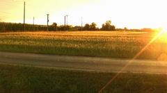 Romantic wheat field at sunset Stock Footage
