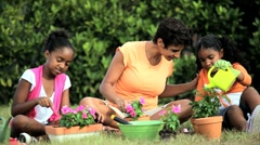 African American Girls & Their Mother Gardening Together Stock Footage