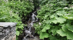 Small Waterfall in Alps - stock footage