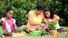 Ethnic Mother & Daughters Gardening Together Stock Footage