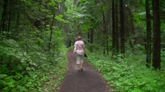 Walk in the woods Stock Footage