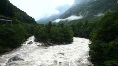 Mountain river and green forest Stock Footage