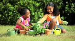 Cute Young African American Girls Gardening Stock Footage
