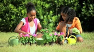 Stock Video Footage of Little African American Girls Gardening