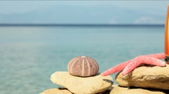 Chilling out Stock Footage