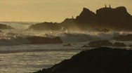Rocky Coastal Scene with Waves, Birds at Sunset Stock Footage
