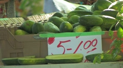 Pickling cucumbers at Farmers Market Stock Footage