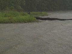 Flood Rain Hurricane Weather Lake River Sea Waves Wind Sidebank Coast Stock Footage