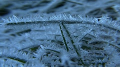 Haw Frost CU01 Stock Footage