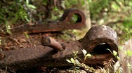 Rusty Hinge 02 Stock Footage
