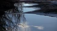 Lake Reflection Trees 01 Stock Footage