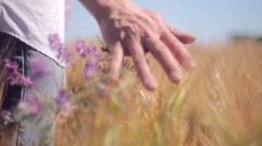 Wheat fields with man's hand touching Stock Footage