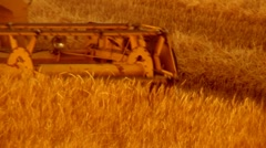 Wheat harvesting new series Stock Footage