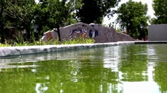 Green water pond in front of USA Memorial Cement Stock Footage