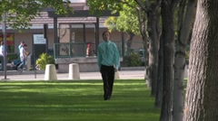 Walking in the park Trees and Grass - stock footage