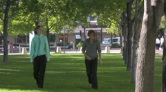 Walking in the park grass trees - stock footage
