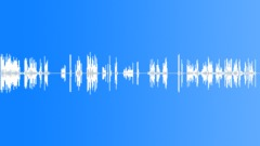 Radio Calls,Police,Waterloo Ontario,M&E Safe 2 Sound Effect