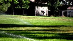 Woman doing Yard Work Sprinklers on the Grass Stock Footage