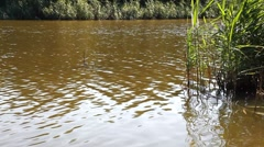 River HD 1080p Stock Footage