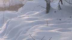 Snow Closeup Blizzard Stock Footage