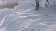 Stock Video Footage of Snow Closeup Blizzard