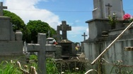 Stock Video Footage of Cemetery - Graveyard 2