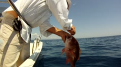 Fisherman with Mutton Snapper Stock Footage
