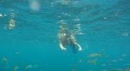 Female Snorkeler Feeding Fish Stock Footage