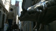 Timelapse Wall Street Bull - stock footage