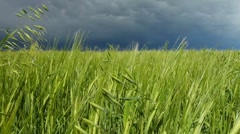 Storm cloud approaching Stock Footage
