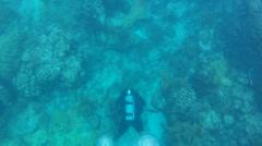 Scuba Diver Bubbles - stock footage