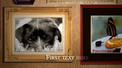 Photo Frame Frezny - stock after effects