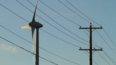 Wind turbines with powerlines Stock Footage