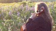 Stock Video Footage of Playing cello with lupines