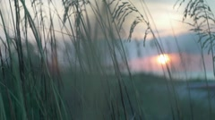 Beach Sunrise 02 Stock Footage