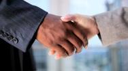 Handshake Between Male & Female  Executives Stock Footage