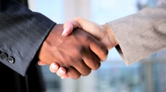 Handshake Greeting Between Multi Ethnic Business People - stock footage