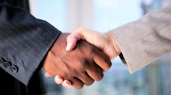 Handshake Between Multi Ethnic Business People Stock Footage