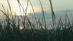 Beach Sunrise 06 Stock Footage