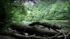 Chattahoochee River 01 Stock Footage