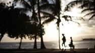Hawaiian Sunset 1446 Stock Footage