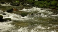 Stock Video Footage of Mountain Stream 1