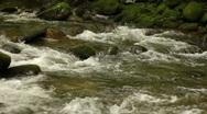 Mountain Stream 1 Stock Footage