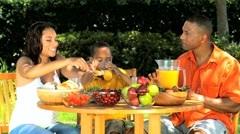 African American Family Healthy Eating Outdoors Stock Footage