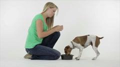 Pretty Girl Feeding Her Dog Stock Footage