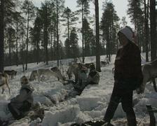 A Finnish reindeer herder sings to the reindeer Stock Footage