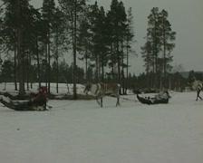 Reindeer pulling sleighs as a Finnish woman sings Stock Footage