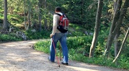 Stock Video Footage of Man nordic walking in the park, forest, slow motion HD