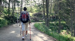 Woman nordic walking in the park, forest, dolly shot HD Stock Footage