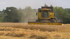 Yellow combine harvester cutting wheat at harvest time - 4:2:2 file Stock Footage